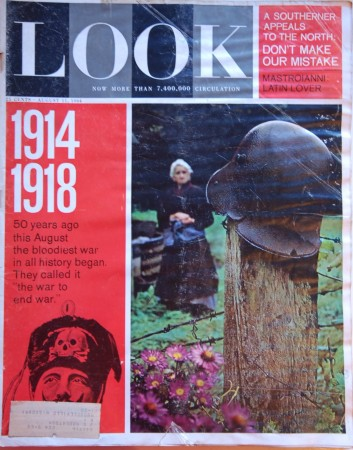WWI and WWII article in LOOK
